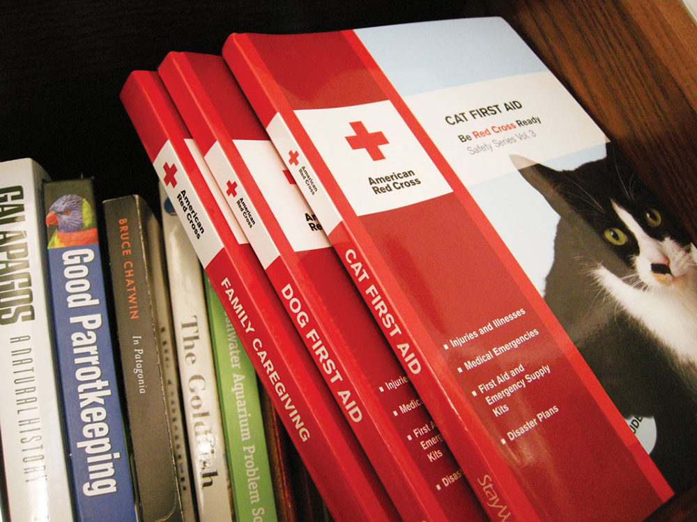 American Red Cross : creating safety and emergency preparedness products